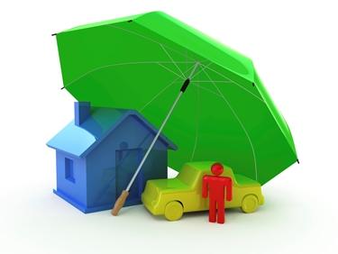 protezione di casa, auto, persona.<p />